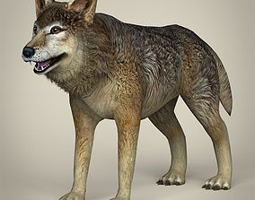 Low Poly Realistic Wolf 3D asset