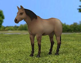 American Quarter Horse 3D