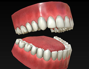 3D model Low Poly Teeth Set with PBR textures