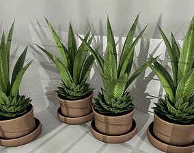 3D asset Indoor Pot Plant 3 Low-Poly