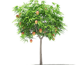 Mango Tree with Fruits 3D foliage