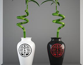 Lucky Bamboo 3D stem