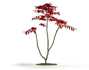 Red Leaf Faux Plant 3D model