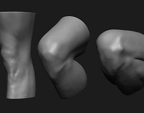 Knee Set Anatomy Reference 3D print model skeleton