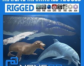3D model rigged Pack - Marine Mammals