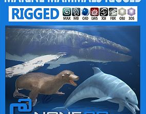 3D model rigged Pack - Marine Mammals