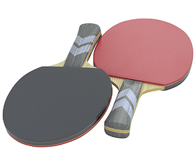 Ping Pong Paddle 3D