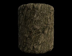 3D model PBR Scanned Rough Tree Bark