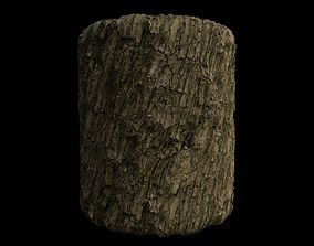 3D model PBR Scanned Rough Tree Bark