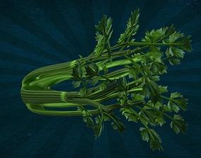 IpoyPunk - FOOD-0014 Celery 3D model