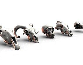3D print model Animal skulls terrain