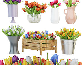 3D Collection of tulips