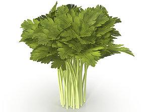 Celery Bunch 3D model