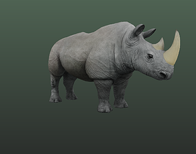 Rhino Hybrid Game 3D model