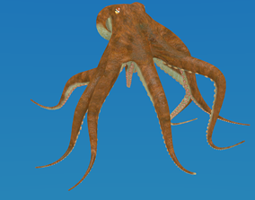 Octopus in some formats 3D model