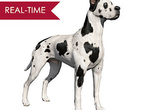 3D asset Great Dane Real-Time