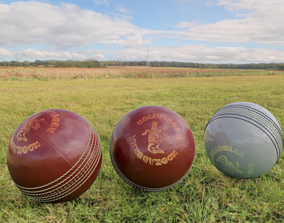 3D model Cricket Balls