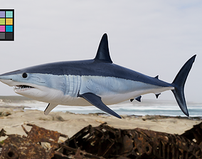 3D Shark Mako model with materials