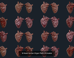 8 Heart Human Organ Pack 3D model