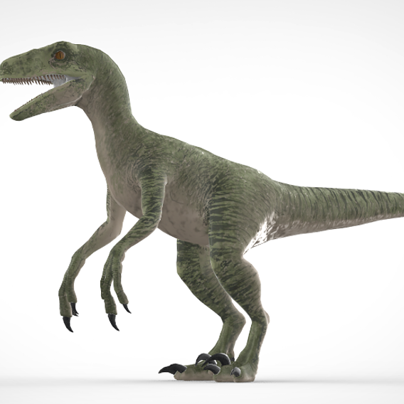 Velociraptor Model