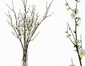 Branches in a vase 3D