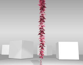 Wild Wine Vine - Parthenocissus - Autumn - 3D model 2