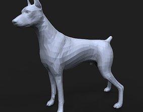 3D printable model Doberman Pinscher cut tail