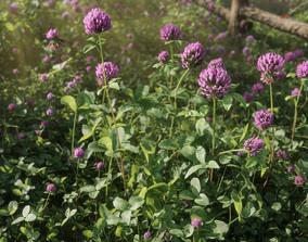 PBR 3D flower Collection vol01 clover