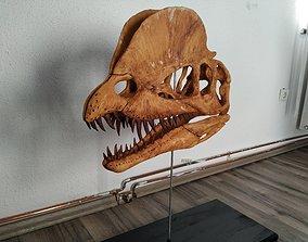 3D printable model Dilophosaurus Skull