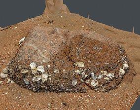 Photoscan Beach Rock 0002 only HighPoly Mesh 16K 3D model