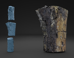 Scanned Old Log HIGH POLY 226K 3D