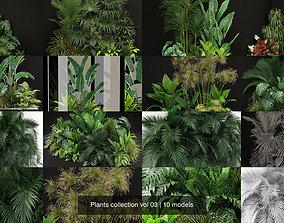 Plants collection vol 03 3D model