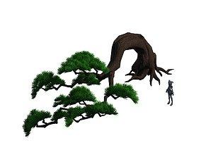 Cartoon Forest - Big Pine 06Trees 03 3D model