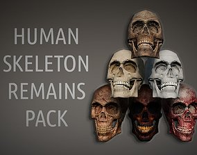 Lowpoly PBR Human Skeleton Remains Pack 3D asset