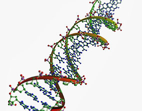 DNA chains 3D