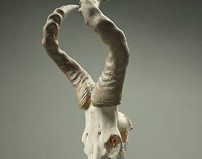 3D model Animal Skull Horned