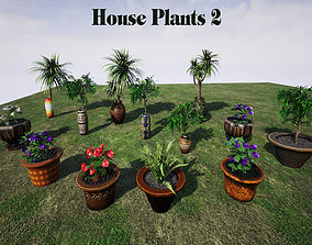 House Plants 2 for UNREAL 3D model