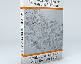 Saint Petersburg Streets and Buildings 3D