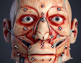 Cranial facial reconstruction - European 3D print model 2