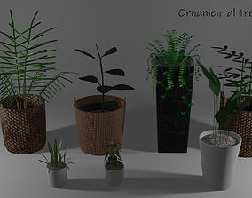3D model ornamental trees