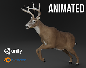 White-Tailed Deer 3D model