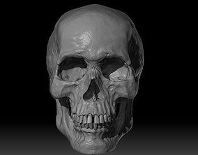Human Skull organic 3D