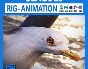 3D model realtime PBR Animated Seagull