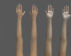 FPS female arms rigged 3D model rigged game-ready