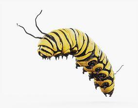 Caterpillar 01 Rigged 3D asset