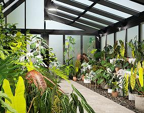 Bundle-15-Interior Plants 3D model