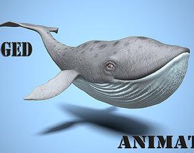 3D model cartoon whale