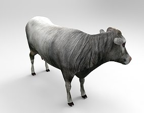 Gray Cow 3D model