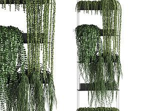 3D Vertical gardening 65