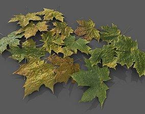15 Canadian Maple Leaves PBR 3D asset